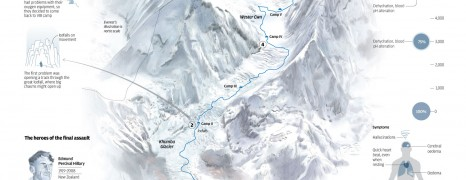1st Everest Summit Facts