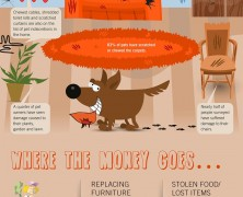 Pet Proof Home