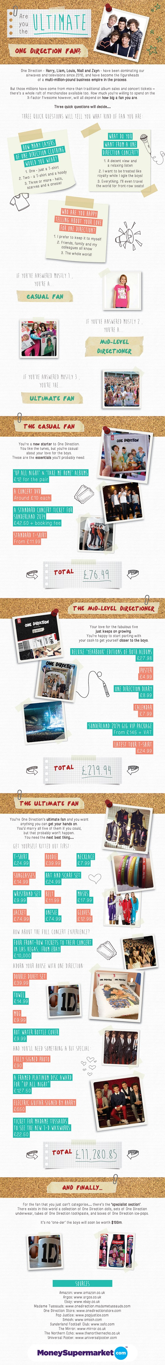 1 Direction Fan Cost-Infographic