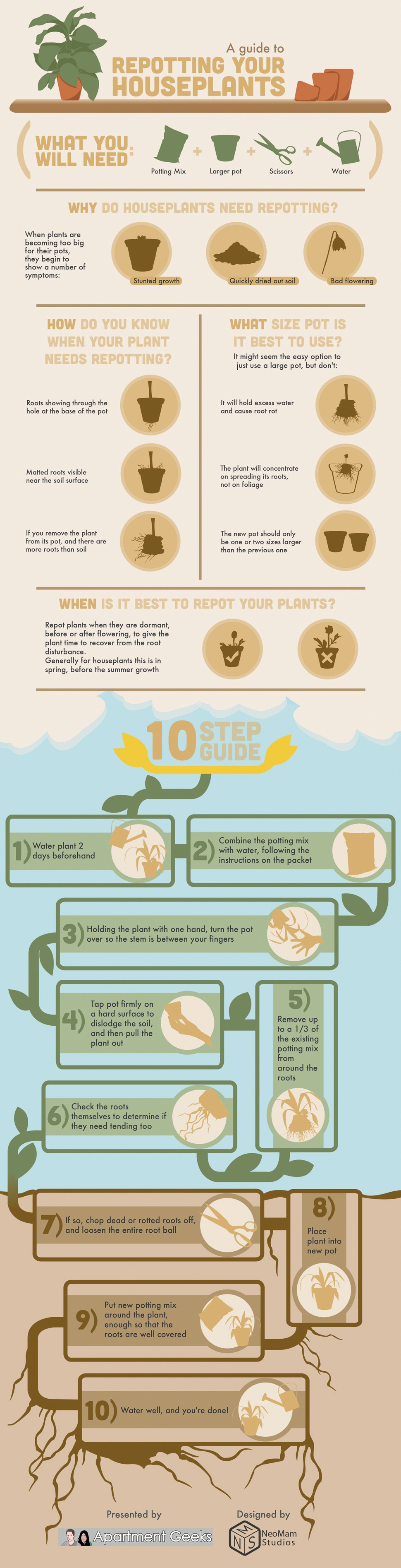 Repotting Houseplants Tips-Infographic