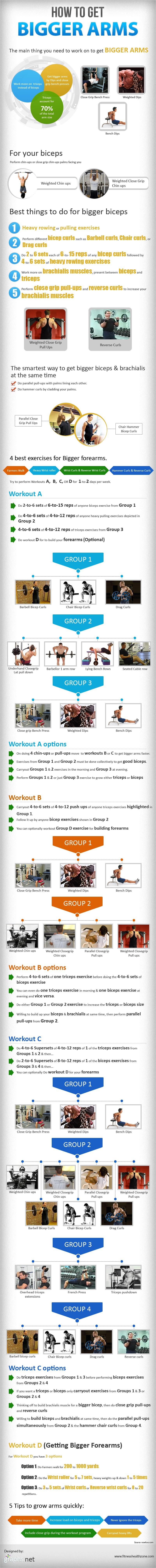 Ultimate Biceps Triceps Workout-Infographic