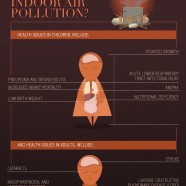 Indoor Air Pollution Facts