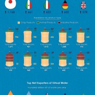 Virtual Water Trading