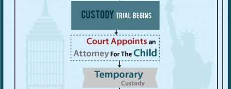 Custody Process NY