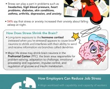Job Stress Costs