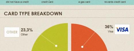 US Credit Card Ownership