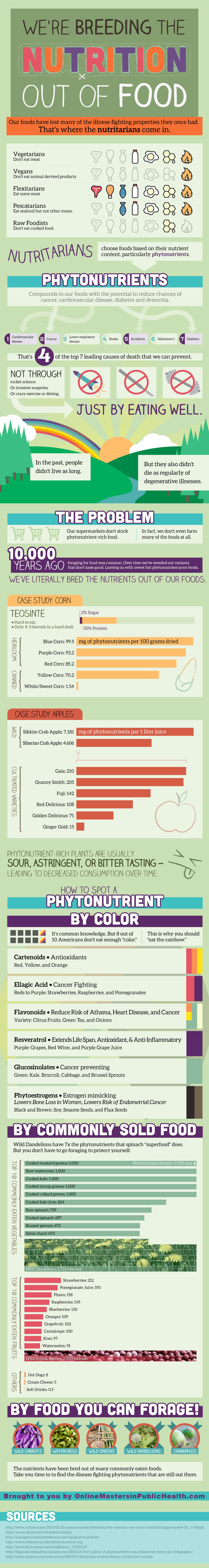 Phytonutrients Benefits-Infographic