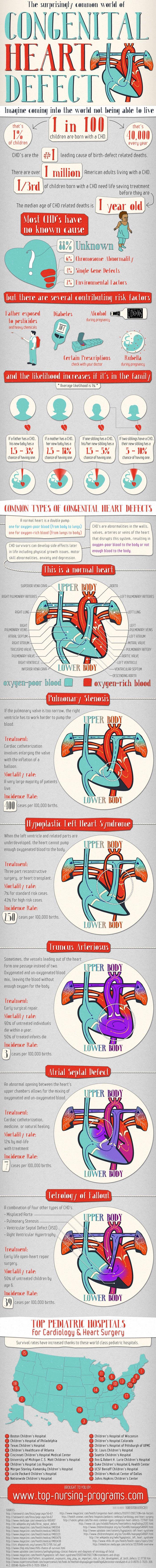 Congenital Heart Defects Statistics-Infographic