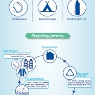 Pet Recycling Process