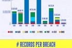 Cyber Breach 2013