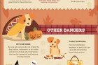 Puppy Care Tips in Fall