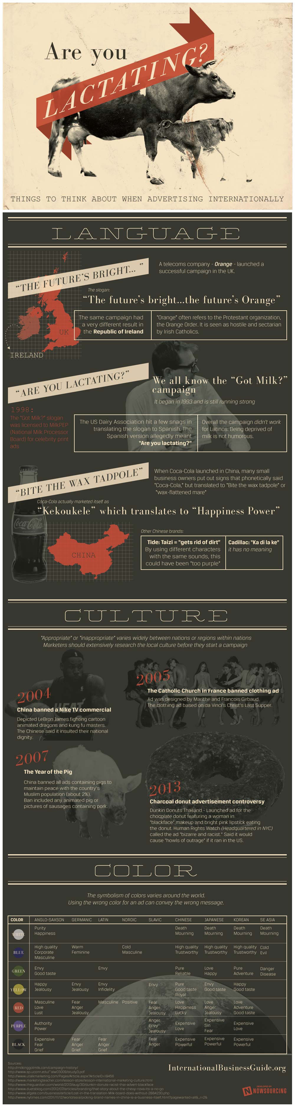 International Advertising Mistakes-Infographic