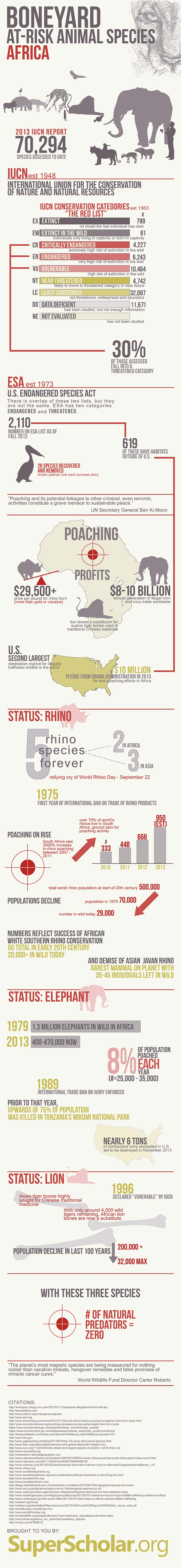 African Animals at Risk-Infographic